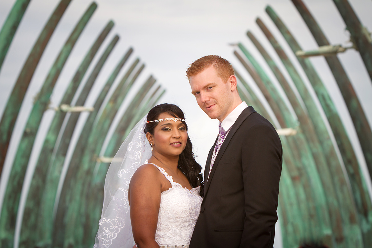 Dave & Veena Wedding 08